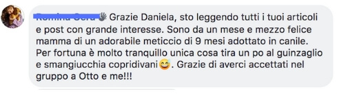 testimonianze community train My buddy